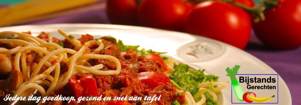 www.bijstandsgerechten.nl